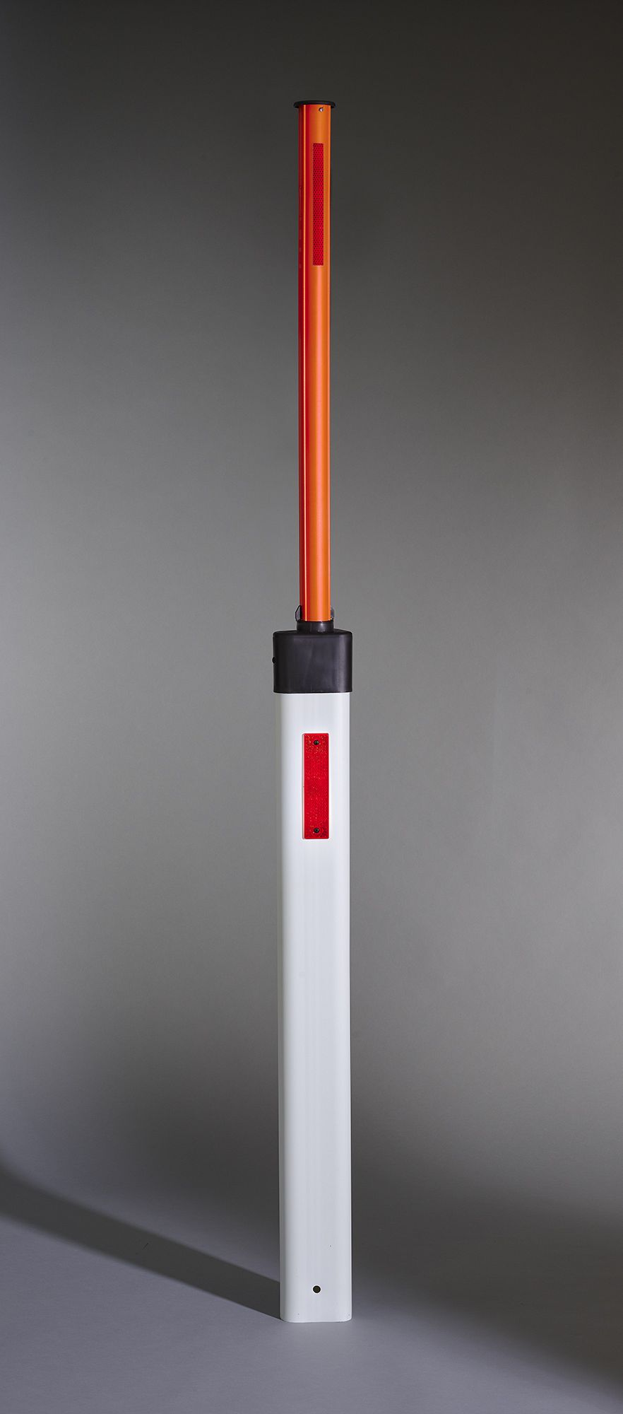 Delineator with integrated snow pole